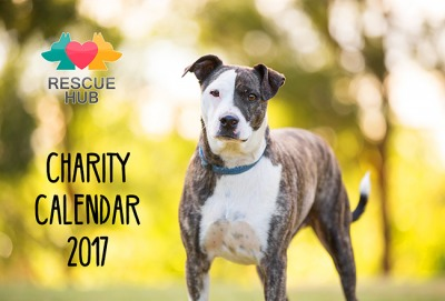 Calendar for a Cause - a barking success!